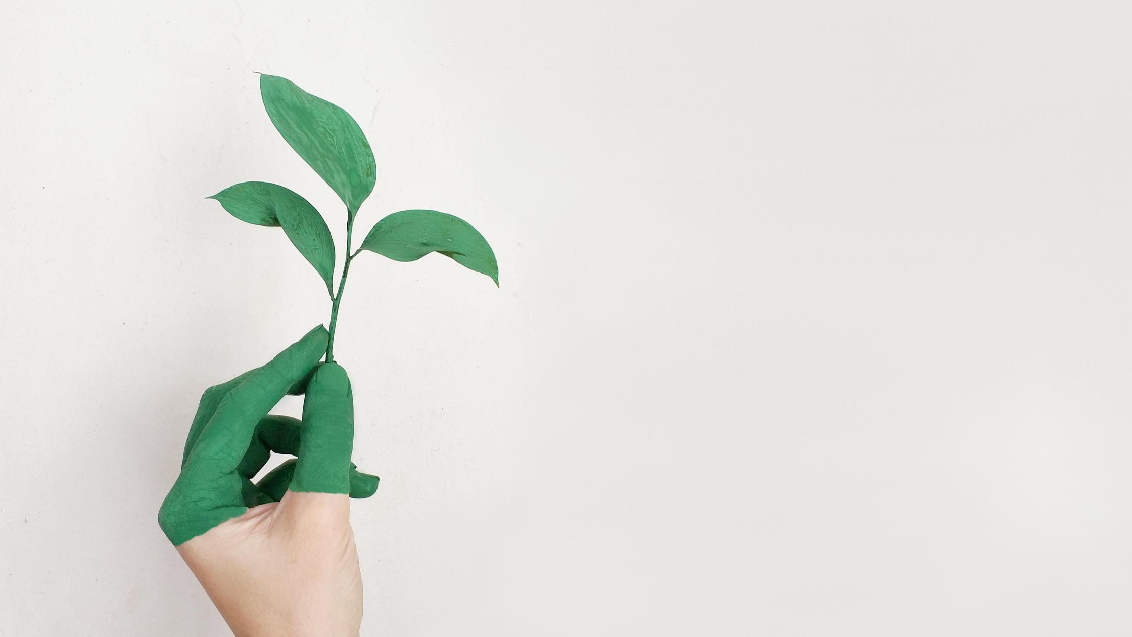 Lebst du eigentlich nachhaltig genug?